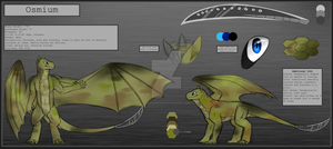 Osmium visual reference sheet By Arcticfox98 by osmiumdragon