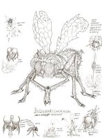 Beelzebub: Lord of the Flies by RenDragonClaw