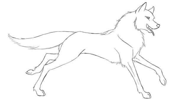 Wolf lineart by TheSuta