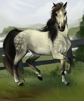CLS Fine China by CedarLane-Stables