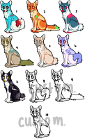 dog adoptables! points and money by safetysuits