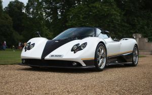 Pagani Zonda PS by FurLined