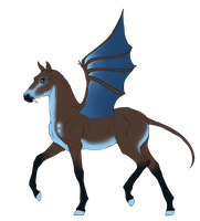 N3189 Padro Foal Design by casinuba
