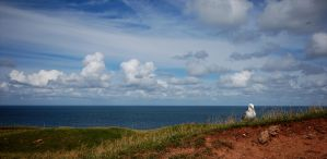 Helgoland by karlomat