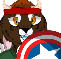 .:The Star Spangled Man with a Plan!:. by WinchesterFoxx