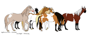 3 Open-Patterned Sale Horses by horsegirl121