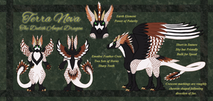 Terra Reference Sheet by Terra-Bites