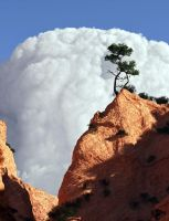 Rising Cumulus over Canyon by Tangled-Universe