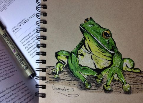 Giant Tree Frog by 3Scar