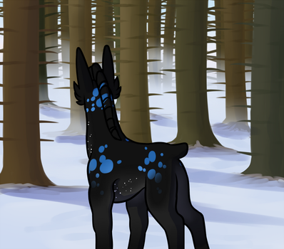 Into the Forest by Elephantfreak