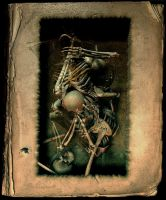 Skin and Bone Book, Version 4 by lostbooks