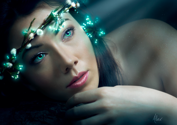Elven Dreams by theAllex