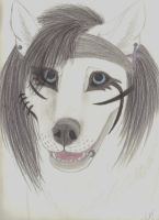 Andy Biersack as a wolf by wolvenwillow