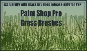 Paint Shop Pro Grass Brushes by FrostBo