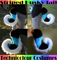 Striped Husky Tail (Sold) by TECHNlCOLOUR