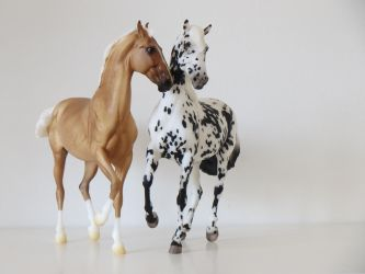 Collection Images: Breyer Marwari / Haute Couture by CarolaFunder