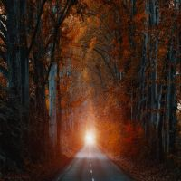 at the end by ildiko-neer
