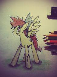 Well..Let's do this then (???) 40 Follower by HYPERdasPONY