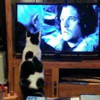 Zorro, meet Jon Snow by SmilingY