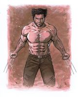 The Wolverine by 93Cobra