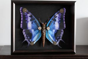 Steampunk Butterfly no.9 by CatherinetteRings