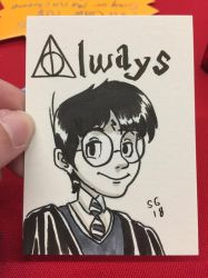 Disney Harry Potter (Timmins con 2018 comission) by SoVeryUnofficial
