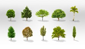 Free Trees Vector Pack by Pixeden
