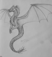 Wyvern by Scaled04