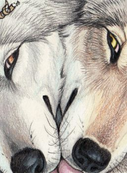 Kiss Kiss - ACEO by Goldenwolf