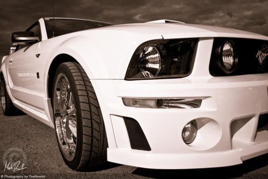 White Mustang by TheRenART