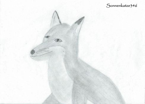 Black and white fox drawing by Sonnenkatze346