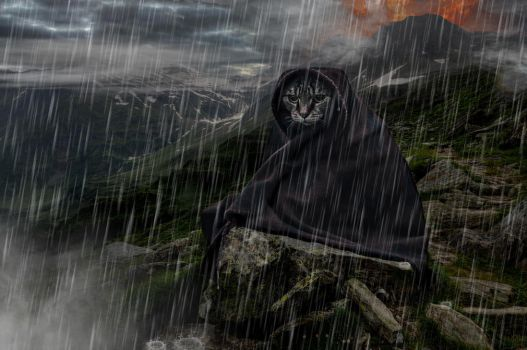 The Road to Barad Purr by Timewyrm