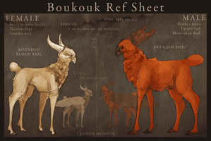 . Boukouk Reference Sheet by steady-fox