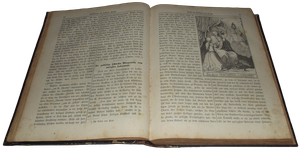 Book of 1877 - 001 - Clear Cut by Travail-de-lame