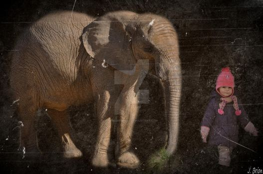 l enfant et l elephant by jeremiebrion