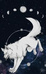 Space Wolf by straywolfart