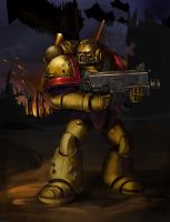 Imperial Fists by Andy-Butnariu