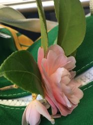 Camellia on Bus (6) by Clare-Prime-of-Ultra