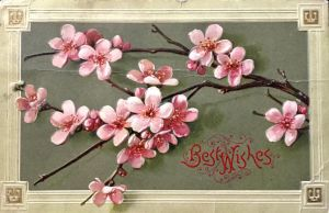 Plum Blossom Best Wishes by Yesterdays-Paper