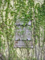 Old Wall 4 by bean-stock