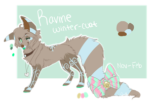 Ravine Winter Ref 2013-14 by LittleRavine
