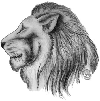 Lion Headshot by NoelleMBrooks