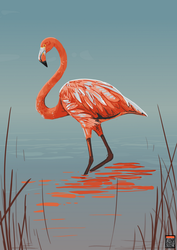 Flamingo for Oddrang by FionaCreates