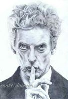 peter capaldi as the 12th doctor by snakedaemon