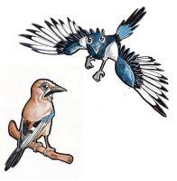 Magpie and jaybird by Jujoweh