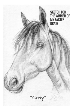 Cody (winner of my Easter draw) by DreamingofDarkhorses