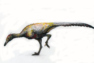 Saurornithoides mongoliensis by Antresoll