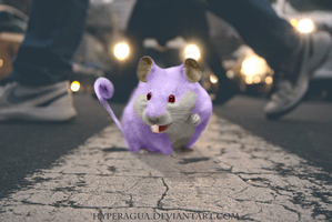 No 19 A city of Rattatas by Hyperagua