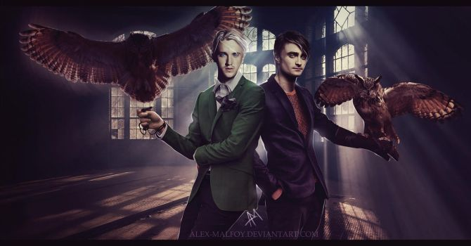 Owls by alex-malfoy