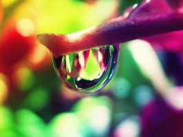 Colourful drop by Kokopa